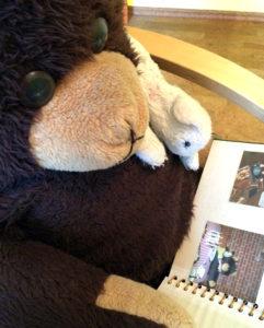Brummbär und Kuschelkatze blättern im Fotoalbum